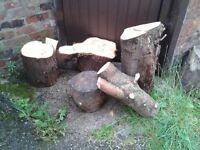 Logs for woodburner.