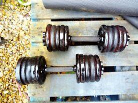 Weights set dumbbells 2 x 12.5 kg