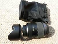 Panasonic Lumix 45-200mm Telephoto lens