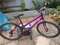 apolloladies mountain bike