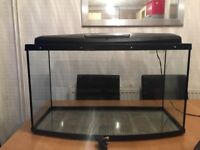 Fish tank with light and accessories - excellent condition!