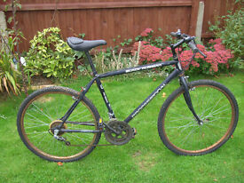 BLACK RUSSIAN MTB ONE OF MANY QUALITY BICYCLES FOR SALE