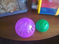 Male dwarf hamster and 2 cages and 2 hamster balls