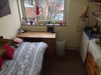 Cosy Bright Single Room in Flat Share Available Now
