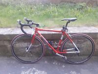 Trek Road bike 2014 Limited Edition