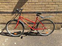 Globetrotter 19 inch, (48cm) Unisex Mountain bike - 18 Speed with lock