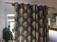 Nice pair of curtains