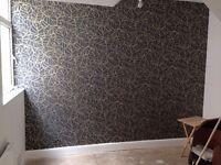 Painter - Handyman services . Cheap prices .