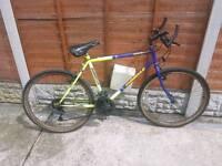 Adult Maintain bike