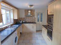 """NO AGENCY FEES-STUDENTS WELCOME"" Well presented,layed back,friendly house,viewing highly recomended"