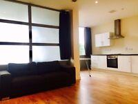 Studio Apartment Slough ( All Bills Inc )