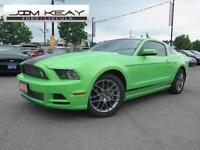 2014 Ford Mustang MUSTANG V6 CLUB OF AMERICA EDITION