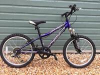 Dawes Lightning childs 6 speed mountain bike