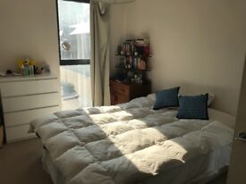 Lovely bright double room in spacious flat in seven sisters- available from now until september