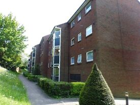 Fantastic 2 bedroom flat avaiable now!!!!