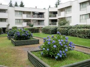 Sherwood Apartments - 2 Bedroom Apartment for Rent