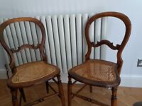 4 mahogany dining chairs- delicate attractive