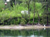River Frontage Lot