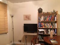 Lovely flat share: your own double room. Shared living room