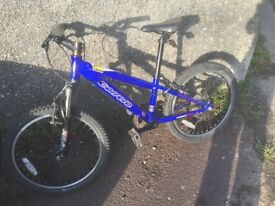 "Childs mountain bike, Carrera 20"" wheels"