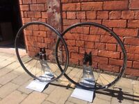 HED Belgium Rims with DT Swiss Hubs & Spokes for Road Bike