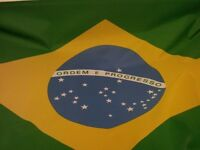 Brazilian Portuguese teachers required