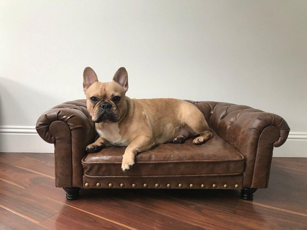 Textar Kahu Chesterfield Dog Sofa Bed Rrp 250