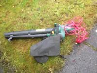 Leaf blower :/ hoover