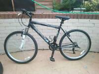 Brand new bike 😊 cheappp!!!!