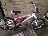 Pinnacle aura girls bike