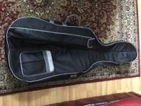 Cello bag 4/4