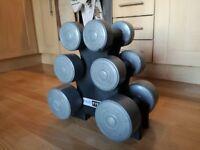 Pro Fitness Weight Set