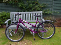 Girls Mountain Style Bike (No Suspension)