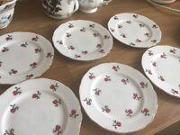 Six bone china plates little red 🌹