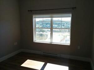 2 Bedroom apartment close to Bally Haly! St. John's Newfoundland image 6