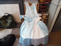 Ladies Cinderella Fancy Dress