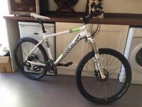 Boardman Comp Mountain Bike 1st to See Will Buy