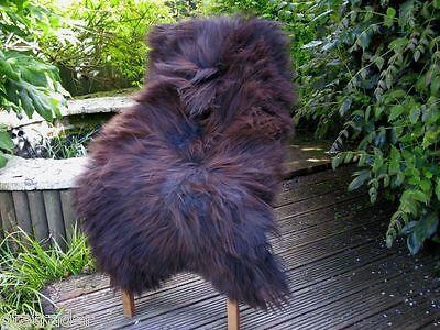 genuine Dark Brown sheepskin rug natural soft , thick wool  XL