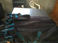 """5'6"""" 100g shires turnout rug"""