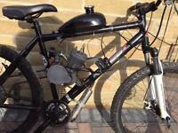 Mountain bike with 80 cc engine