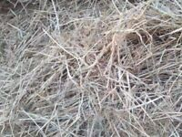 For sale carry bags full of hay bargain £4 a bag
