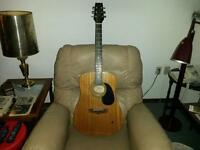 * Reduced *Vantage Acoustic guitar