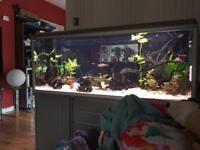 Akva-Stabil Effectline aquarium