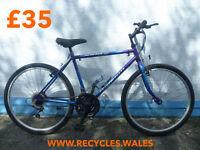 Raleigh Sabre Mountain Bike