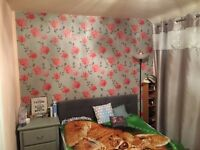 Large/spacious fully furnished Double room. Friendly, clean and quiet house