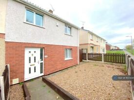 3 bedroom house in Tranquil Walk, New Rossington, Doncaster, DN11 (3 bed) (#1107304)
