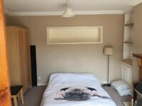 Lovely Large / Master Room Within Professional House Share In Lower Compton (Nr Mutley).