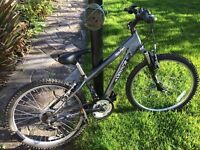 Boys Raleigh Aluminium Freez bike, wheel 52cm/20in