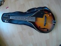 Electric semi acoustic Tanglewood mandolin in sunburst with soft case