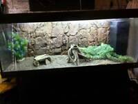 5ft juwel fish tank